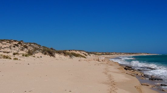 Beachnude Beach: 15866